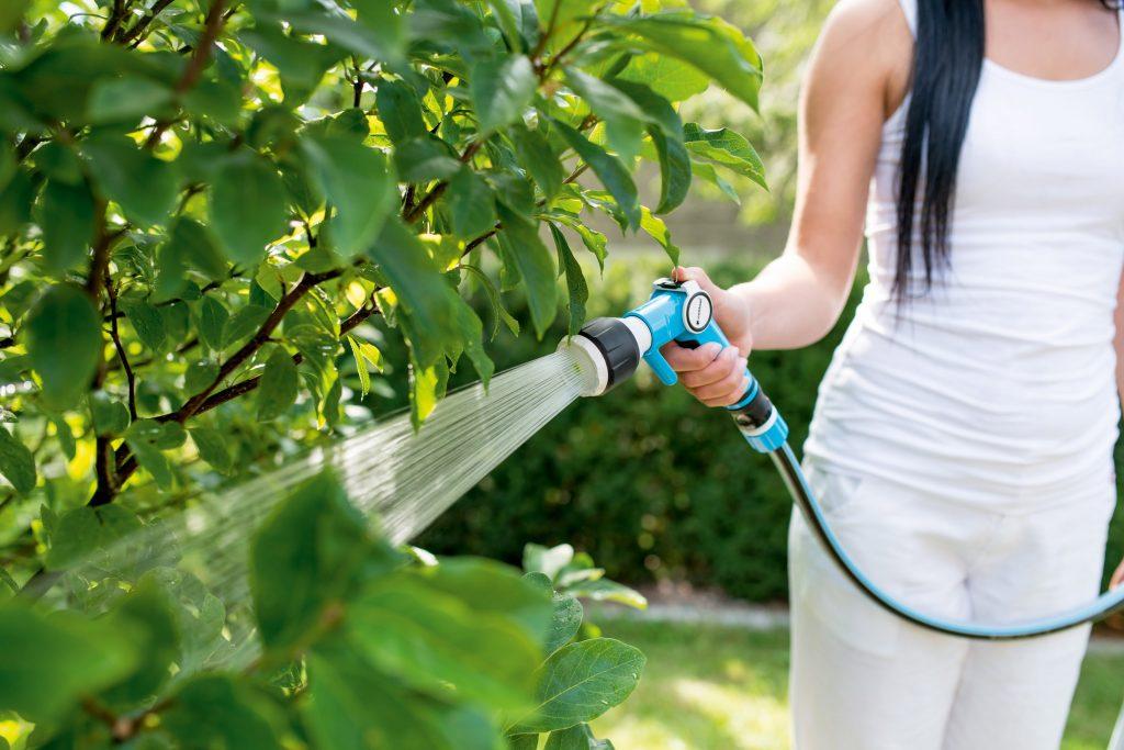 Поливочный инструмент для сада и огорода