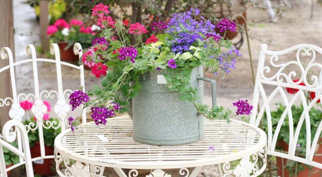 Террасы: цветочное оформление летом, весной, осенью, зимой