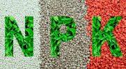 Фосфорные подкормки для растений